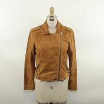 Lucky Brand Ladies Brown Suede Zip Up Riding Jacket Size Xs Photo