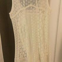 Lucky Brand White / Cream Dress Small Nwt Lace Great for Wedding Photo