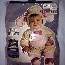 Lucky Lil' Lamb Halloween Costume  Photo