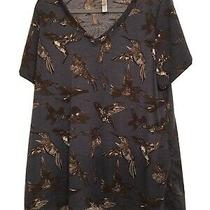 Lularoe 2xl Christy T Shirt Top Blue Brown Hummingbirds Photo