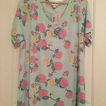 Lularoe Christy Shirt 2xl Mint With Pink and Beige Floral v-Neck Photo