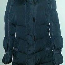 Lulu Bravo Coat Size Large Photo