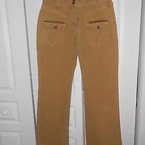 Lulu Castagnette Mustard Gold Grunge Pants Photo
