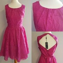m&co Fit and Flare Dress 14 Petite Blushing Rose Floral Pink Magenta Bnwt  Photo
