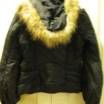 Mackage Winter Coat Jacket Photo