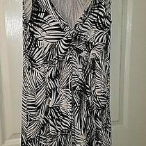 Macy's style& Co Black and White Summer Dress Size Large  Photo