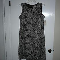 Macy's Style & Co. Brown/white Sheath Dress 14w Photo