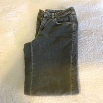Macy's Style & Co Stretch Gray Cords Size 4 Photo