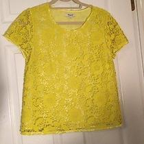 Madewell Lace Blouse Photo