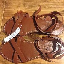 Madewell Sightseer Sandals Shoe Size 6 Brown Leather Photo