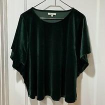 Madewell Woman 3x Green Nwt Flutter Sleeves Shirt 5745 Photo