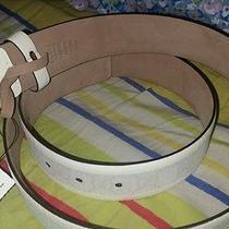 Man Gucci Belt Photo