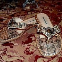 Manolo  Blahnik  Jeweled  Snakeskin  Sandals / Thong  Slides  Gold  Size  42 Photo