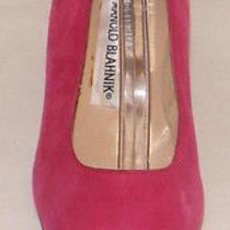 Manolo Blahnik Pink Suede Jeweled Buckle Bridal Wedding Pump Shoes Sz 6/36.5 New Photo
