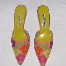 Manolo Blahnik Pink Suede W/multi-Color Floral Patches Point Toe Mules 38.5 Eur Photo