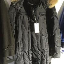 Marc New York Marvel Ladies Hooded Down Parka Small Olive Down Fill Coat 500 Xl Photo