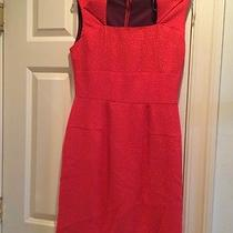 Marc New York Red Work Dress 8 Photo