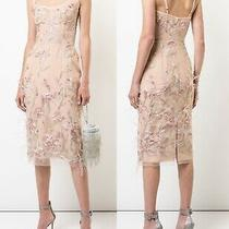 Marchesa Notte Lily Corset Feather Embroidered Blush Cocktail Dress Sz 0  795 Photo
