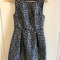 Marcs  Leopard Print Dress Size 8 Euc  Express Tracked Post Included  Photo