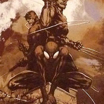 Marvel Comics Spiderman Daredevil Wolverine T Shirt Distressed Parker Logan Smal Photo