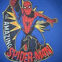 Marvel Comics the Amazing Spider Man T Shirt Sz L Euc Peter Parker Super Hero Photo