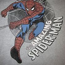 Marvel Comics the Amazing Spider Man T Shirt Sz L Nwt Peter Parker Super Hero Photo