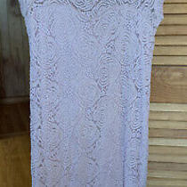 Maternity Blush Pink Lace Dress Photo
