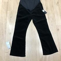 Maternity Trousers by Citizens of Humanity Size 30. Black Soft Velvet. Photo