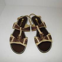 Matiko Shoes Sz 7 Flats Sandals Leather Brown New  Photo