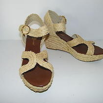 Matt Bernson Sz 10 Sandals Wedge Heels Straw Design Ankle Strap Brand New Photo