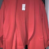 Maurices Xl Solid Open Front Blazer Canyon Bloom Photo