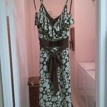Max and Cleo Dress Size M Photo