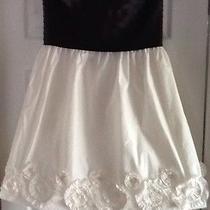 Maxandcleo Black/white  Taffeta  Dress Size 12 Nwt Photo