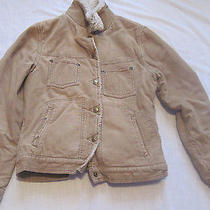 Med Tan Corduroy Faux Sheep Like Wool Linned American Eagle Cute Little Jacket Photo