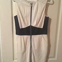 Medium Bebe Dress - Great Condition  Photo