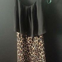 Medium Cheetah Dress Photo