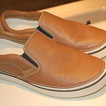 Men Crocs Photo