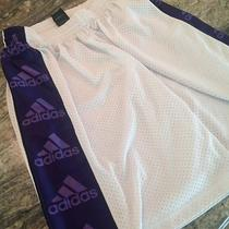 Men's Adidas Mesh Basketball Shorts With a Large Purple Vertical Stripe - Nice  Photo