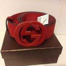 Men's All Red Suade Gucci Belt Photo