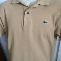 Men's Authentic Lacoste Polo shirt.vertically Sewn Mother-of-Pearl buttons.m Photo