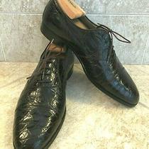 Men's Bally Dk Brn Crocodile Dress Shoes  Size 10 M  Photo