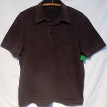 Men's Brown W/black Stripe Express Modern Fit Polo Size L Photo