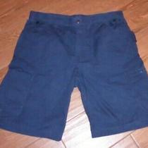 Men's Carhartt Cargo Work Shorts Relaxed Fit Size 36 Navy Blue Euc Photo