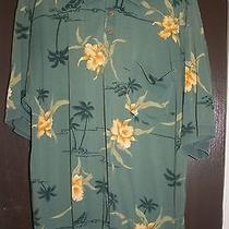 Men's Designer Name Xl Shirts Photo