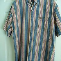 Men's Dickies Large Cotton Shirt Photo