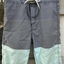 Men's Element Watersports Size 29 Board Shorts Dark Blue &green Stripe 9