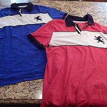 Men's Express Polo Lot Red and Blue Size L Photo