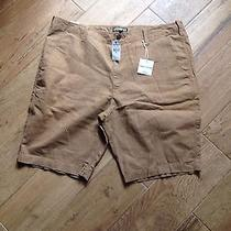 Men's Express Shorts Photo