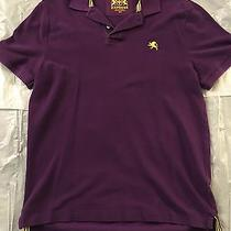 Men's Express Slim Fit Solid Polo Shirt Purple Size Small Photo