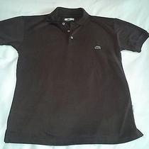 Men's Lacoste Polo Shirt Brown Size M Medium Free Shipping Photo